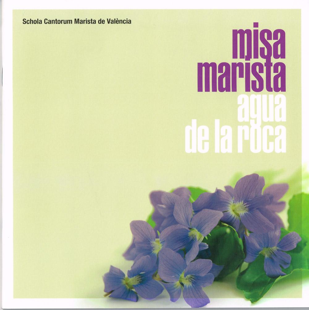 MISA-MARISTA-AGUA-DE-LA-ROCA-03022015