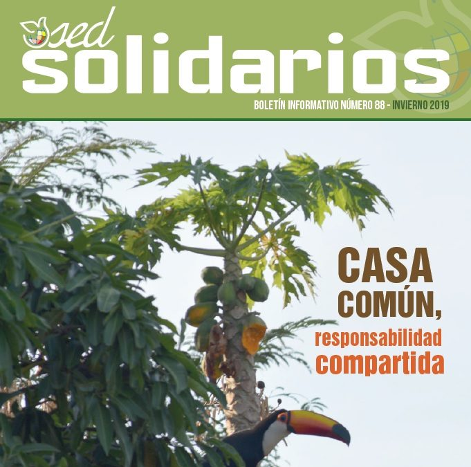 SED Solidarios nº88: Casa común, responsabilidad compartida